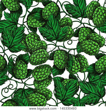 Hop vector seamless pattern. Hand drawn artistic beer green hopes with leaves on white background. Vintage wallpaper. Great drawing decor for oktoberfest or beer packaging