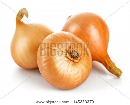 Three fresh onions harvest vegetable. Isolated white background