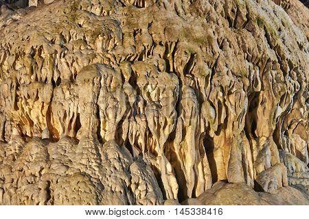 Stalagmites, Columns And Draperies In Han Caverns, Belgium