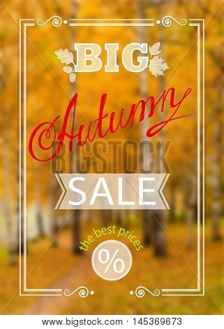 Vector inscription Big Autumn Sale with framing and leaves, on the realistic blur background with park and orange trees
