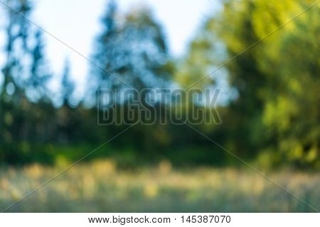 Colorful Nature Bokeh Background Blurred