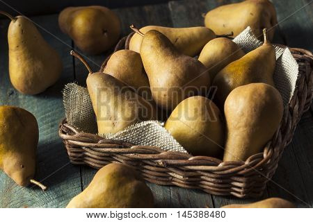 Raw Organic Green And Brown Bosc Pears