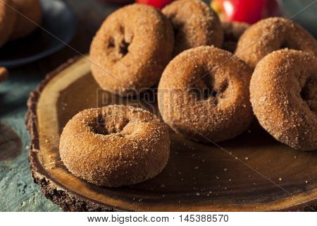 Homemade Sugared Apple Cider Donuts