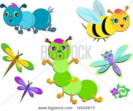 Mix of Cute Insects