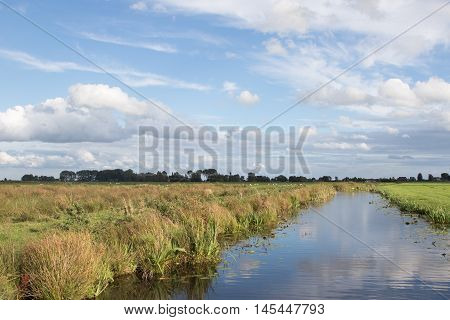 Typical polder canal near farmland with sheep in The Netherlands