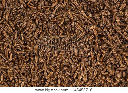 Cumin seeds or caraway, top view, close-up