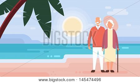 Senior Couple Grandmother And Grandfather on Seaside Sea Shore Background Flat Vector Illustration