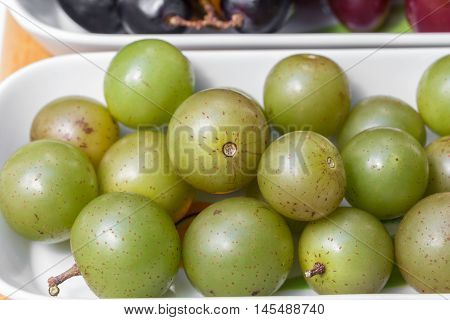 Muscadine swamp grapes have a thick skin and a tart flavor.
