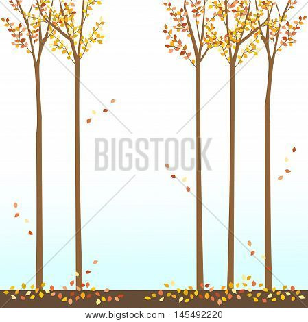 fall autumn leaves falling leaves trees sky background