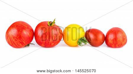 Tomato in a row. Various of tomatoes red and yellow isolated on white.