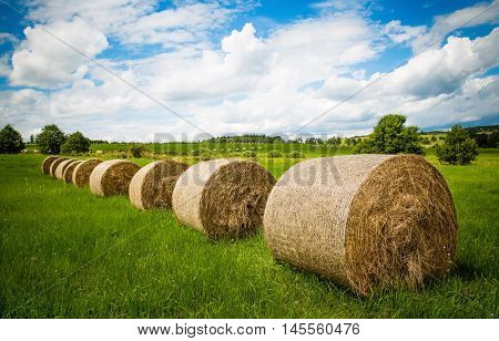 Line of drying hay balls on the green field with cloudy blue sky.