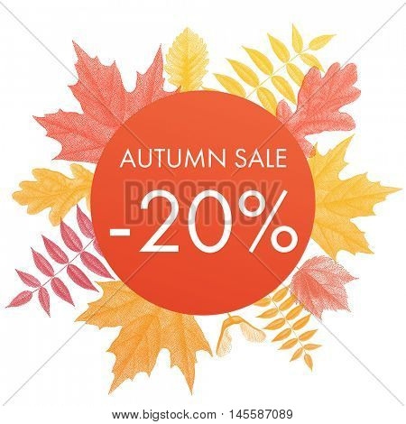 Autumn sale 20% off circle banner. Vector discount offer with autumnal red maple, orange oak, yellow rowan foliage on white background.