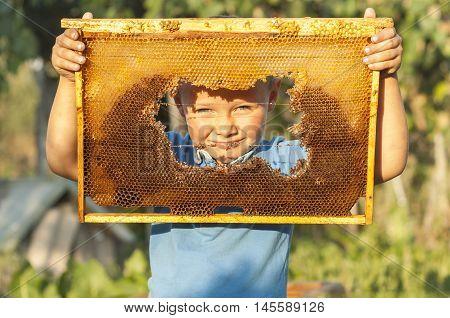 Smiling boy holding frame of honeycomb. beekeeping