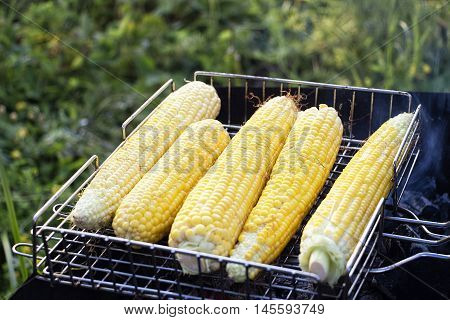 Fresh ripe golden yellow corn on the cob sizzling on the fire of a small outdoor portable barbecue