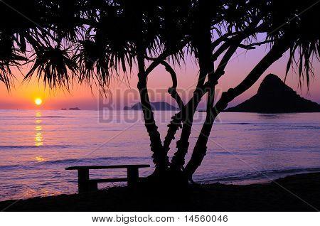 Chinamans Hat Sunrise, Oahu Hawaii
