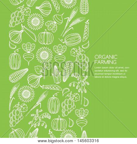 Vector Seamless Green Background With Vegetables And Cereal Grains Icons.