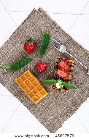 Sweet Tasty Viennese Waffles Studio Photo on Gray
