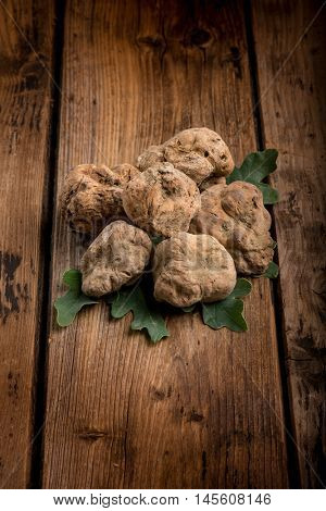 group of white truffle over wood background