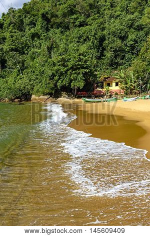 View of the Red Beach and the meeting between the sea and the rainforest on the green coast of Rio de Janeiro