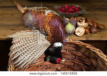 Wild pheasant and fruit in an old master hunting still life