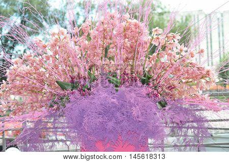 Purple floral compositioncloseup, big pink orchids bouquet
