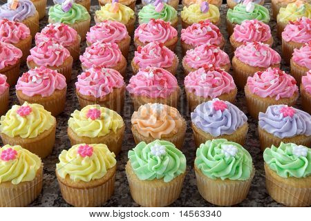 Rows of Pastel-Icing Cupcakes