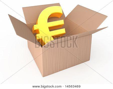Euro in opened box