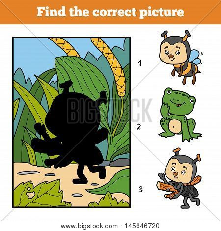 Find The Correct Picture. Little Ant And Background