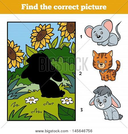 Find The Correct Picture. Little Rabbit And Background