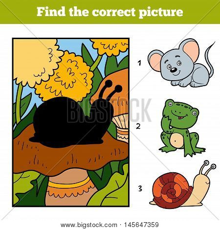 Find The Correct Picture. Little Snail And Background