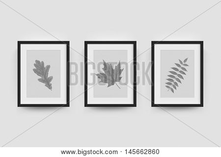 Picture frame with botanical illustration of autumn oak, rowan, maple leaf engraving. Vector realistic frame gallery for interior wall mockup