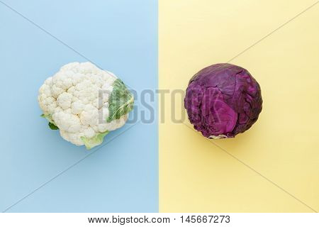 Cauliflower and red cabbage on a bright color background. Seasonal vegetables minimal style. Food in minimal style.
