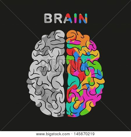 Abstract human brain with the icons of art and science. The concept of work left and right sides of the human brain. Back to school icons.