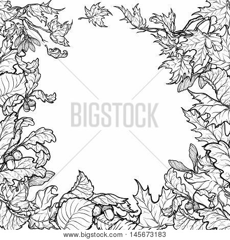 Fall Festival frame or border. Greeting card, flyer or poster template. Sketch style autumn leaves isolated on white background. Elaborate hand drawing. Colouring book. EPS10 vector illustration.
