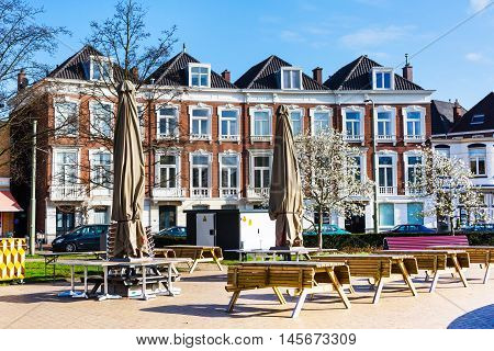 Hague, Netherlands - April 6, 2016: Street view with traditional dutch houses and spring tree blossom in Hague, Holland