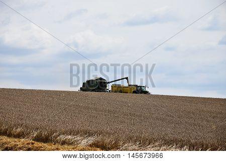 Combine Harvester pouring grain trailer. Combine Harvester.