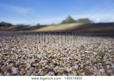A Lot Of Broken Small Corals, Scrap Of Sea Shell On The Sand On Foreground And Blurred Blue Sky And