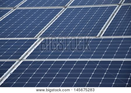 Panels solar powerplant. Sunlight voltaic power plant.