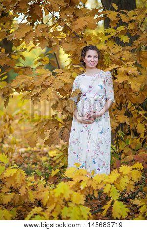 Pregnant Female In Autumn