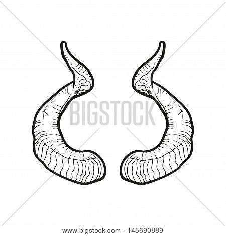 Black doodle contour of horns isolated on white.