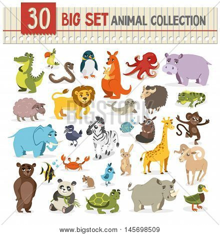 Big  collection of cute wild animal. vector illustration on white background