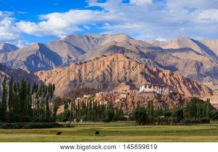 Stakna Monastery Leh Ladakh Jammu and Kashmir India