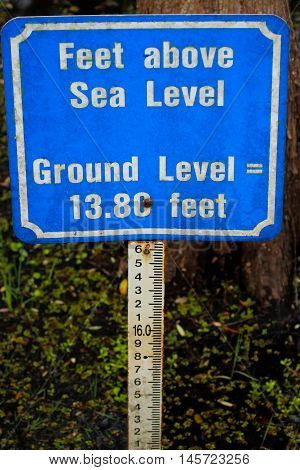 Sea level marker at 6 mile Cypress Slough Florida