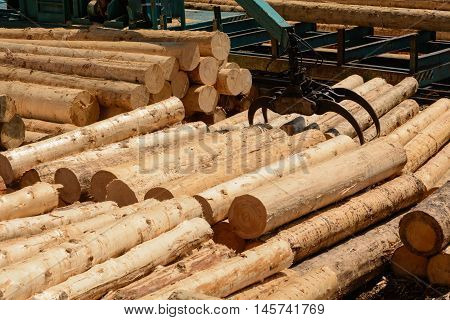 peeled round wood are sized with crane in a sawmill