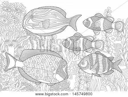Stylized composition of tropical fish underwater seaweed and corals. Freehand sketch for adult anti stress coloring book page with doodle and zentangle elements.