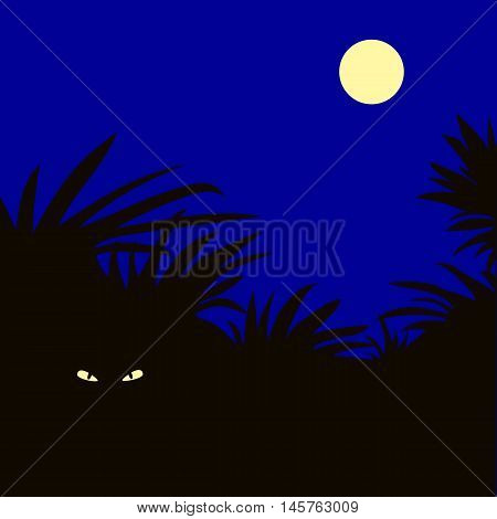 night moon animal nature vector horror .