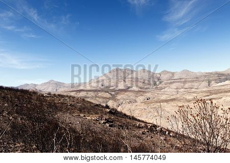 Mountain - Swartberg Nature Reserve