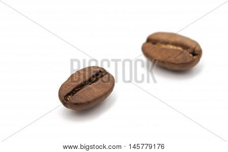 robusta coffee beans on a white background