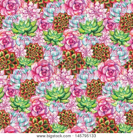 Watercolor succulent cactus flower plant hand drawn seamless pattern