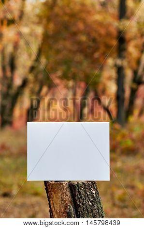 nature, season, white paper sheet on blur autumn park background